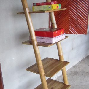 shelf.ladder with stand.1